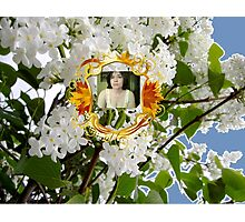 Author and the Seasons Photographic Print