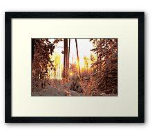 Winter on fire Framed Print