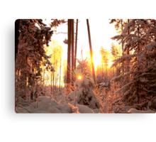 Winter on fire Canvas Print