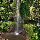 Crystal Shower Falls, Dorrigo NP, NSW by Adrian Paul