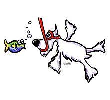 White Schnauzer Snorkel Buddy Photographic Print