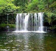 Sgwd Ddwli Uchaf Waterfall by Avril Harris
