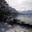 Lake Geneva by Lynn Wright