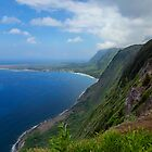 Kalaupapa Overlook by SynappedPhoto
