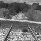 Railway by ZASPHOTOS
