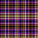 02331 Queens County, New York District Tartan Fabric Print Iphone Case by Detnecs2013