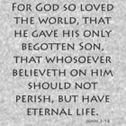 John 3:16 - American Standard (Bible Verses) by aforceofnature
