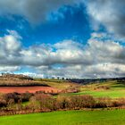 Rolling Hills of the Golden Valley by gardencottage