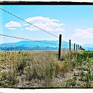 Montana Fence by tvlgoddess