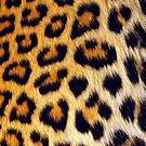 leopard print - iphone by DCPRODUCTION