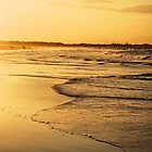The Golden Glow of Byron Bay by Emily McAuliffe