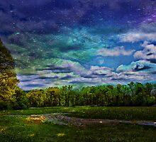 Dream Myself Awake by Scott Mitchell