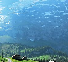 Springtime in the Swiss Alps by Emily McAuliffe