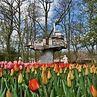 Tulips Galore by John Vriesekolk