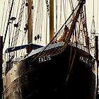 FALIE AT NORTH ARM-PORT ADELAIDE by JAMES LEVETT