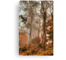 Guardians In The Mist  - Mount Wilson - NSW  - The HDR Experience Canvas Print
