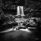 Knyvet Falls by Mieke Boynton
