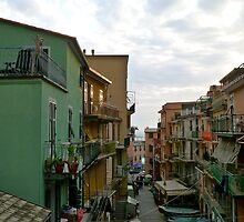 Looking down on Manarola by kejube