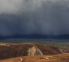 The Gathering Storm by Jamie  Green