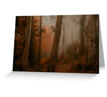 Bushland Solitude  - Mount Wilson - NSW  - The HDR Experience Greeting Card