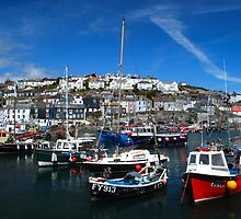 Just Mevagissey in the Spring by DMHotchin