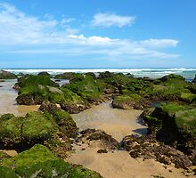 Newcastle Beach, NSW by Sharon Brown