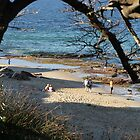 Cronulla Beach, New South Wales by aussiebushstick