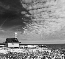 Leuty Lifeguard House In The Winter by Gary Chapple