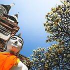 The Tree and the Buddha by Stephanie Lee