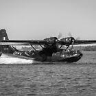 Catalina Landing - B&W by Michael Clarke