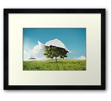 Rediscover the nature Framed Print
