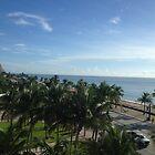 Ocean View by Nancy Badillo