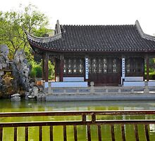 Chinese Garden by sgrixti