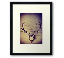 Past Glory Framed Print