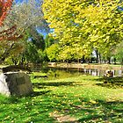 Autumn In Tumut by Terry Everson