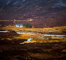 Tiny White House by Dave Hare