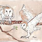 Barn Owls by Maree Clarkson