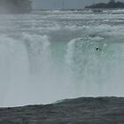Niagara Falls And Seagul by Barry W  King