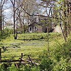 Elora Farmhouse by Debbie Oppermann