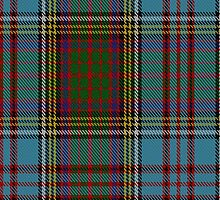 10005 Anderson Clan/Family Tartan Fabric Print Ipad Case by Detnecs2013