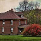 Red House, Red Bush by vigor