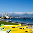 yellow kayaks by Anne Scantlebury