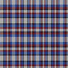02351 Cuyahoga County, Ohio District Tartan Fabric Print Iphone Case by Detnecs2013
