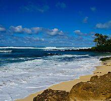 Rugged south shore Oahu Hawaii by raymona pooler