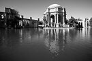 Palace of Fine Arts by Fern Blacker
