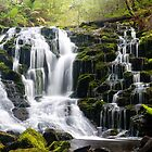 Olivia Creek Cascades  by bluetaipan