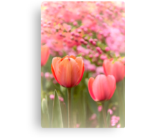 Spring Froth Canvas Print