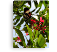 Botanical With A Hint Of Flying Element ~ Part One Canvas Print