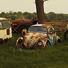 VW Cemetery N0.4 by Barry W  King