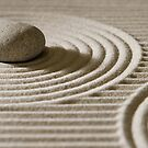 Mini zen garden by christopherjl